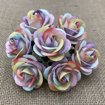 Chelsea Roses Rainbow Colored