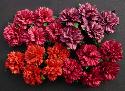 Wild Orchid Crafts Carnations Mixed Red