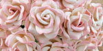 Chelsea Roses 2-Tone Baby Pink/Ivory RESTOCKED!