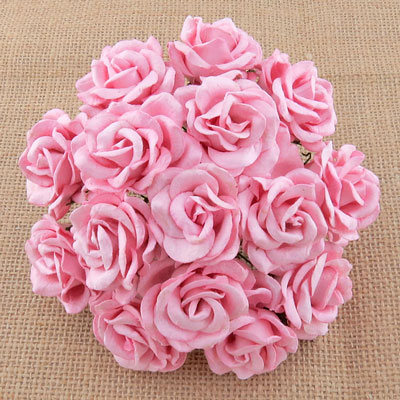 Chelsea Roses Baby Pink