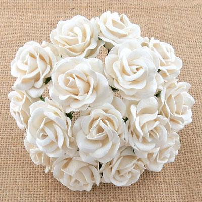 Chelsea Roses White RESTOCKED!