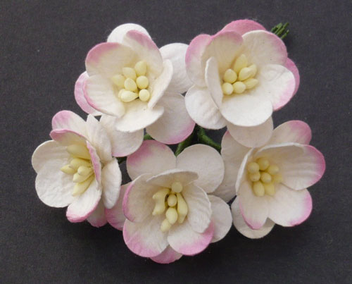 Wild Orchid Craft Cherry Blossoms 2-Tone Pink/Ivory