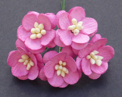 Wild Orchid Craft Cherry Blossoms Pink RESTOCKED!