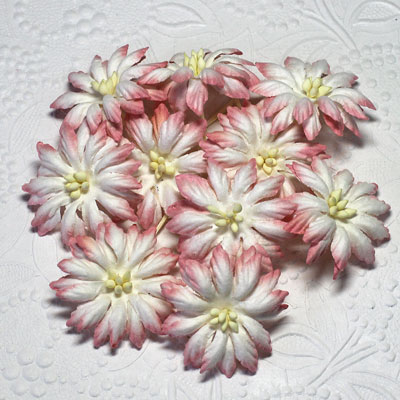 Dimco 2-Tone Ivory/Coral Rose SALE!