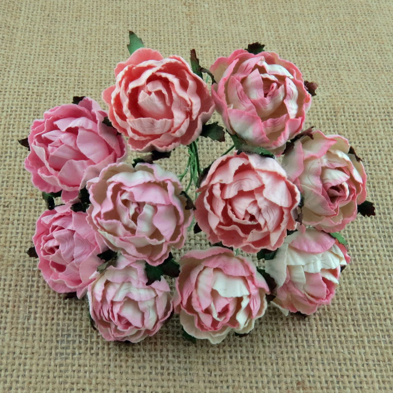 Peony Flowers Mixed Pink