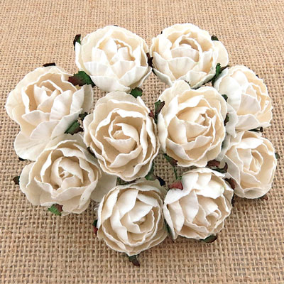 Peony Flowers White