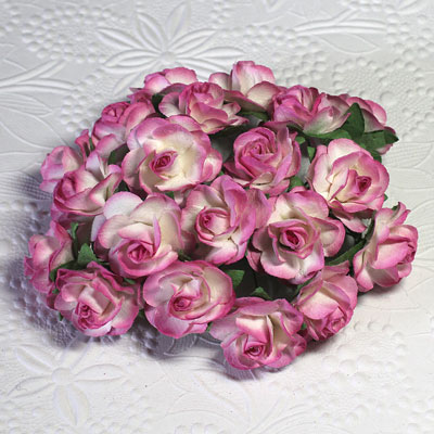 25mm Open Roses 2-Tone Ivory/Hot Pink