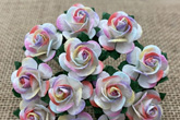 Wild Orchid Crafts Open Roses 2-Tone Pastel Rainbow