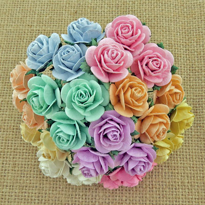 Wild Orchid Craft 20mm Open Roses Mixed Pastel