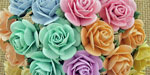 Wild Orchid Craft 10mm Open Roses Mixed Pastel