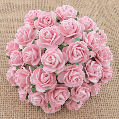 Wild Orchid Crafts Open Roses Pale Pink