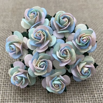 Wild Orchid Crafts Open Roses Pastel Rainbow