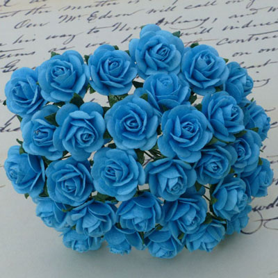 Wild Orchid Crafts Open Roses Light Turquoise