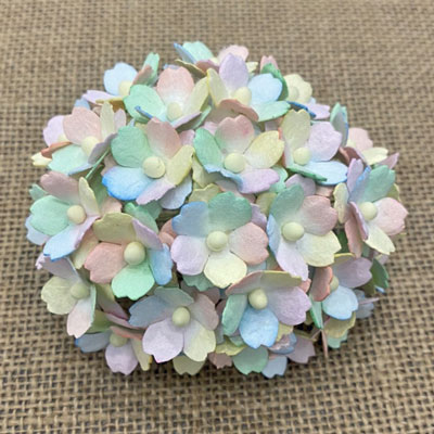Wild Orchid Craft Sweetheart Blossoms Mixed Pastel Rainbow