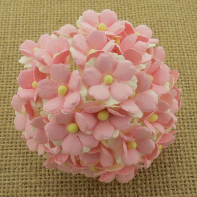 Wild Orchid Craft Sweetheart Blossoms 2-Tone Baby Pink