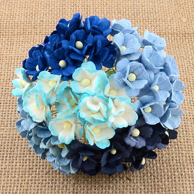 Wild Orchid Craft Sweetheart Blossoms Mixed Blue