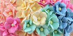 Wild Orchid Craft Sweetheart Blossoms Mixed Pastel