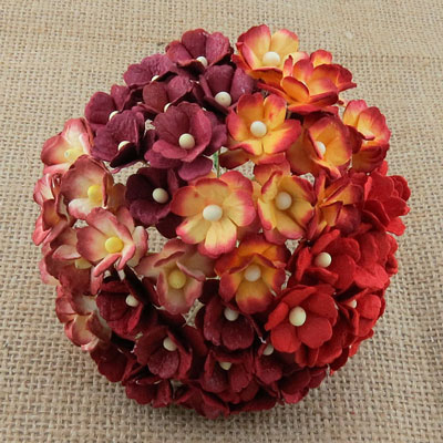 Wild Orchid Craft Sweetheart Blossoms Mixed Red