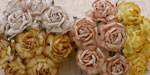 Wild Orchid Crafts 40mm Tea Roses Mixed Earth Tone