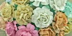 Wild Orchid Crafts 40mm Tea Roses Mixed Pastel