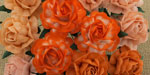 Wild Orchid Crafts 40mm Tea Roses Mixed Peach/Orange RESTOCKED!